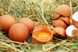 Nipošto ne bacajte ljusku od jaja, prijeki je lijek za štitnu žlijezdu i gastritis!