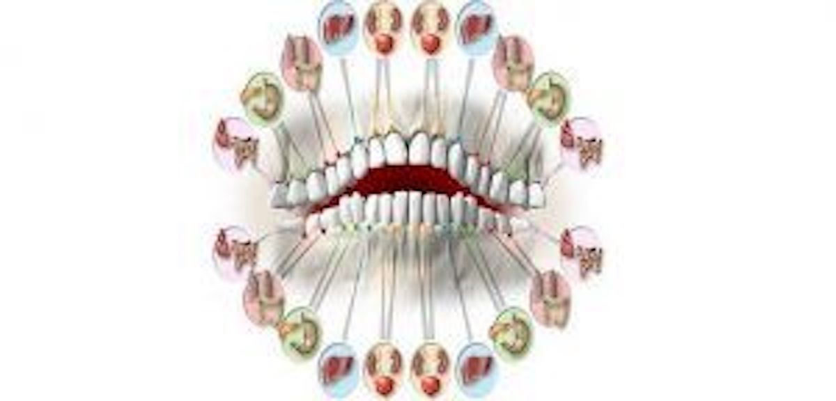 Jeste li znali da svaki zub najavljuje problem u određenom organu?