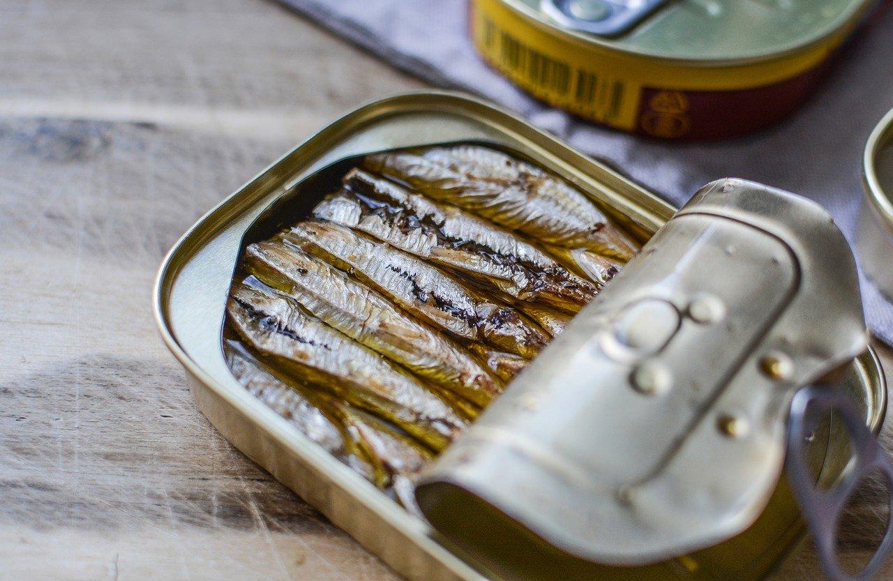 Jednom konzervom sardina po dr. Džošu u tijelo ste unijeli  važne…