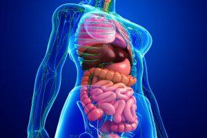Prevencija protiv raka debelog creva: Sve što treba da uradite je OVO!